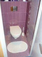 WC v starom byte