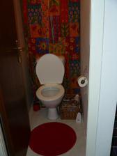 tak isto aj WC čaká rekonštrukcia. Nakoľko je dosť dlhý, tak by sme ho  chceli predeliť na dve malé miestnosti - jedna bude malé WC a v druhej by bola práčka, regál s čistiacimi prostriedkami, metlou, vysávačom, ...