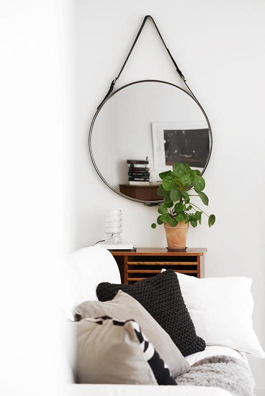 Máme rádi pokojovky aneb květiny v bytě-domě - Obrázek č. 2