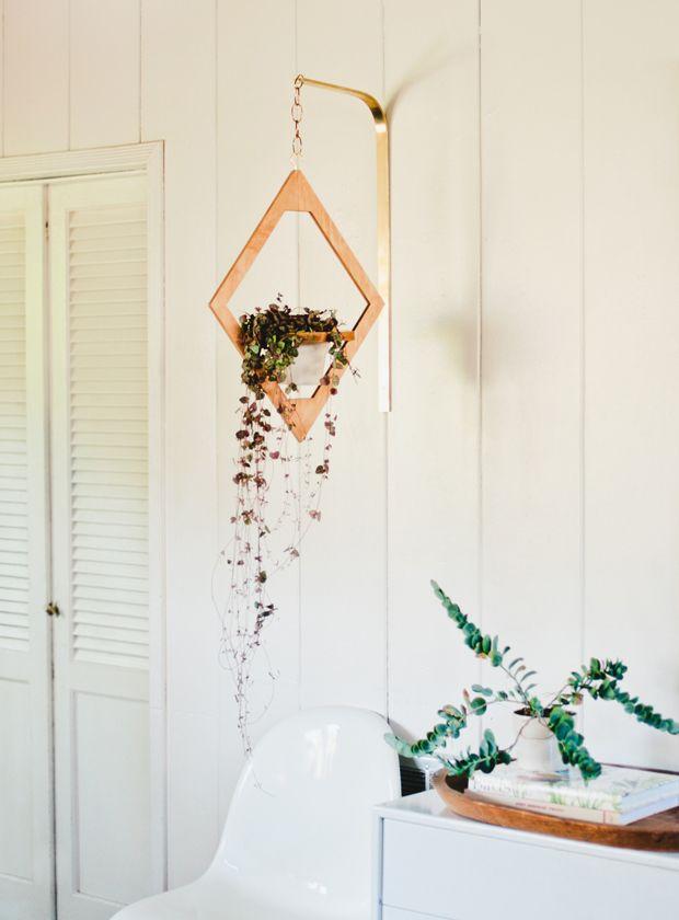Máme rádi pokojovky aneb květiny v bytě-domě - Obrázek č. 5