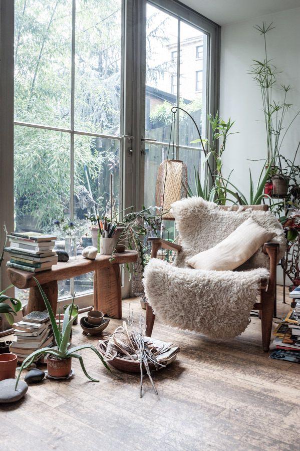Máme rádi pokojovky aneb květiny v bytě-domě - Obrázek č. 14