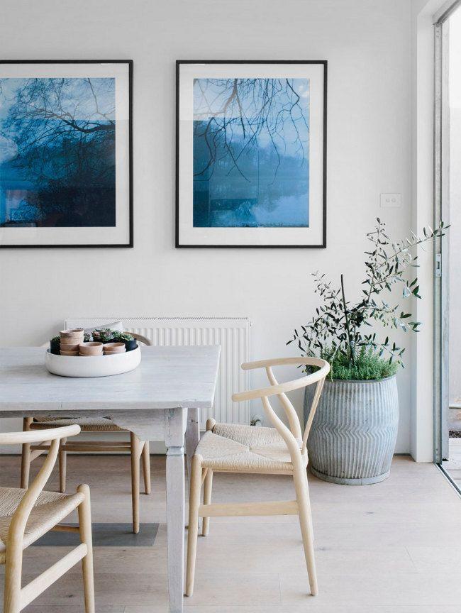 Máme rádi pokojovky aneb květiny v bytě-domě - Obrázek č. 19