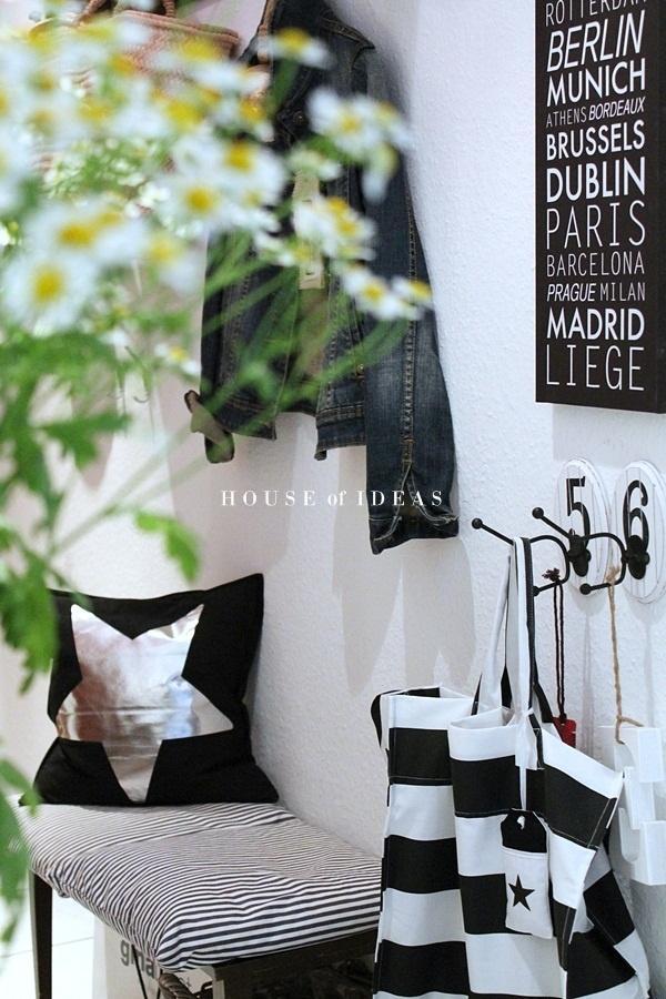 Máme rádi pokojovky aneb květiny v bytě-domě - Obrázek č. 39