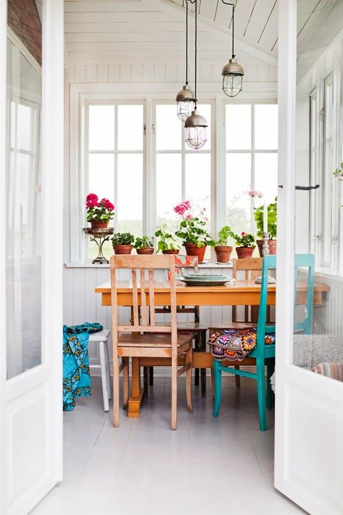 Máme rádi pokojovky aneb květiny v bytě-domě - Obrázek č. 66