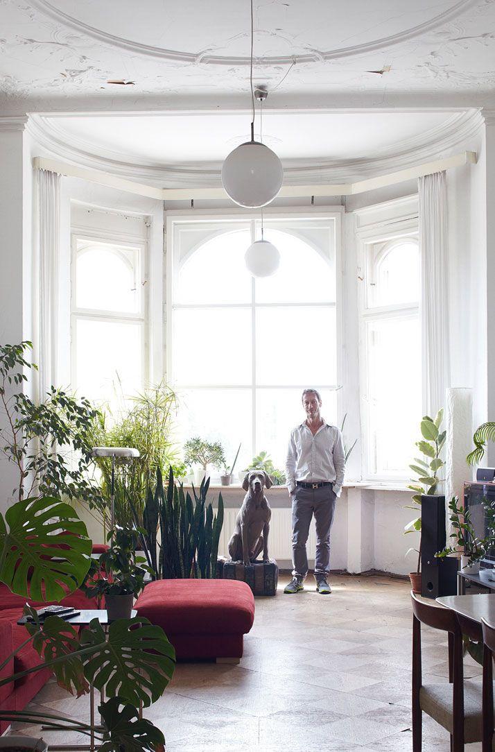 Máme rádi pokojovky aneb květiny v bytě-domě - Obrázek č. 67