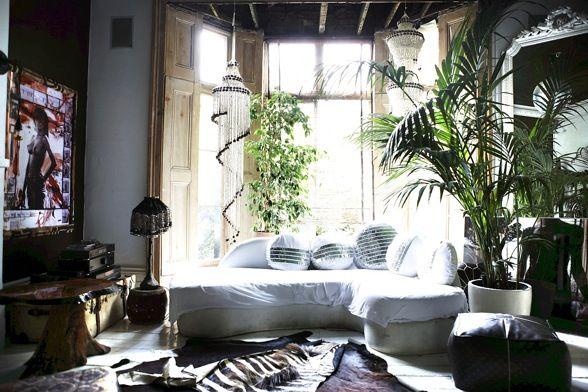 Máme rádi pokojovky aneb květiny v bytě-domě - Obrázek č. 82