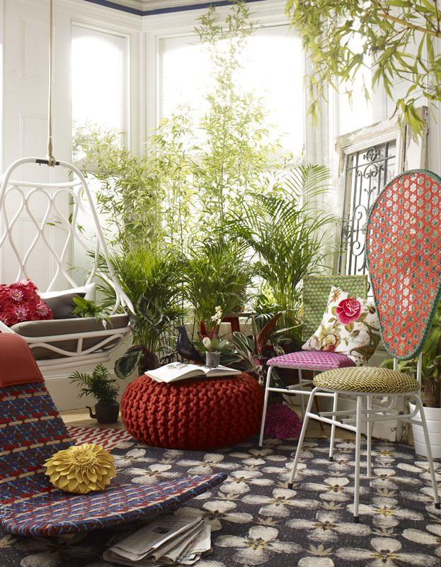 Máme rádi pokojovky aneb květiny v bytě-domě - Obrázek č. 89