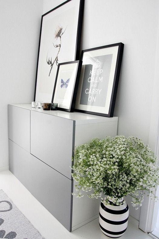 Máme rádi pokojovky aneb květiny v bytě-domě - Obrázek č. 92
