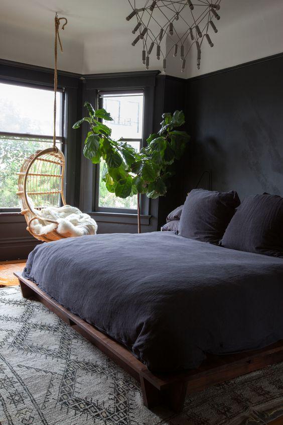 Máme rádi pokojovky aneb květiny v bytě-domě - Obrázek č. 357