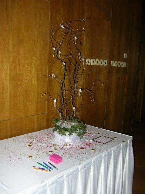 V pátek před svatbou nám kamarádky vytvořily strom přání