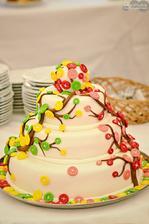 Úžasný dort!