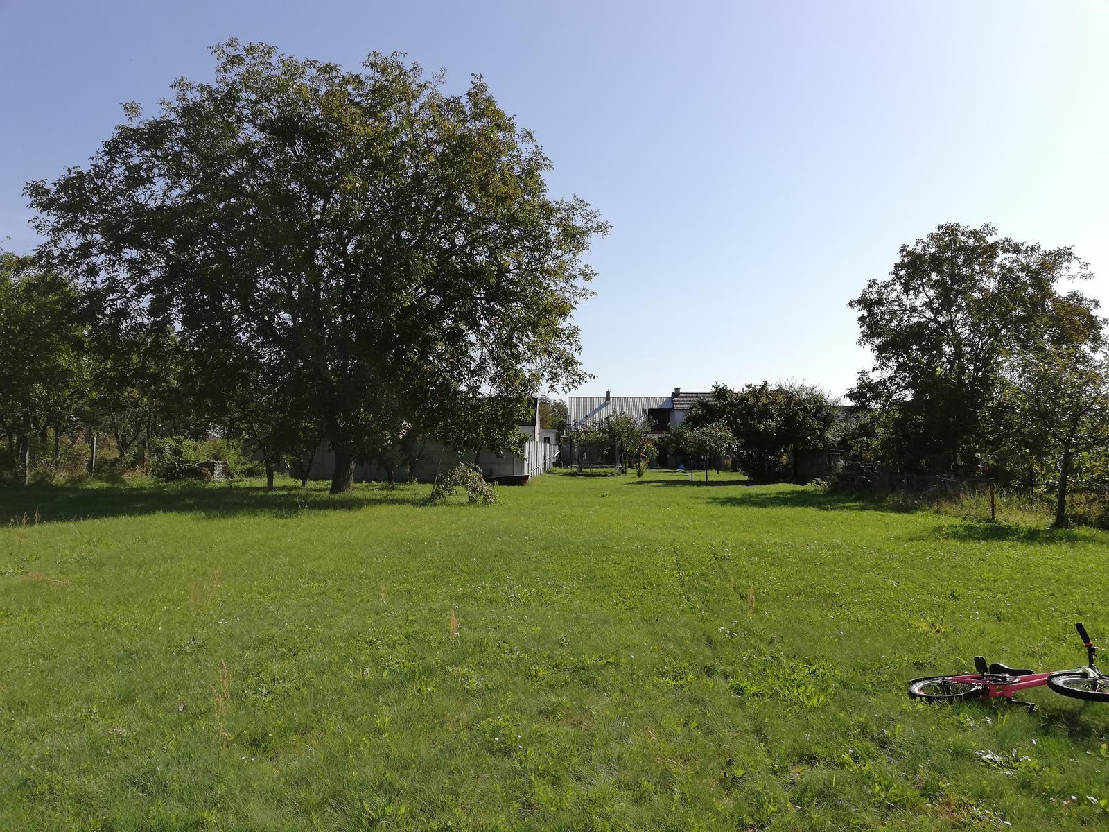 Naša záhrada a veľké plány s ňou 😊 - Pohľad z konca pozemku