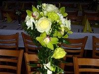 AandM - pekna harmonia kvetov a farieb
