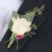 AandM - z ruže