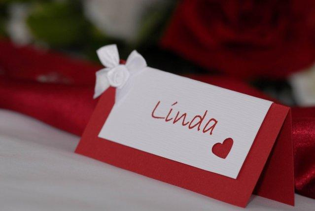 Vysnivana svadba - Jednoznacne vedie tato menovka...