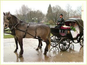 bílí koníci a tento kočár budeme mít, ale nesmí mod pršet...