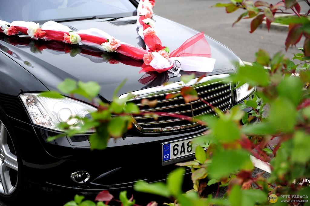 studioleni - Dvojitá šerpa s umělými růžemi, na výzdobu svatebního auta. Drží přísavkami, které jsou součástí