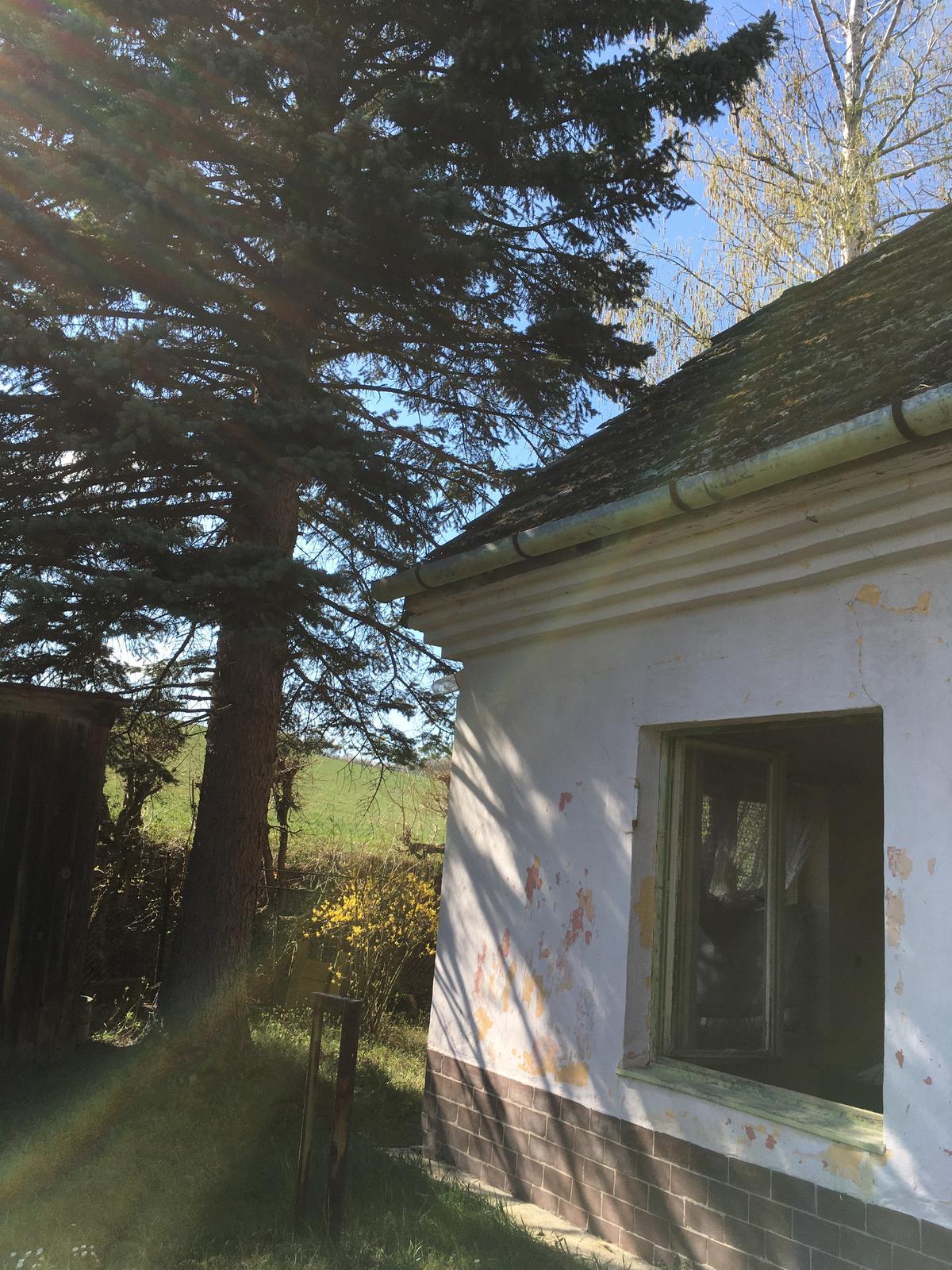 Dom - Obrázok č. 35