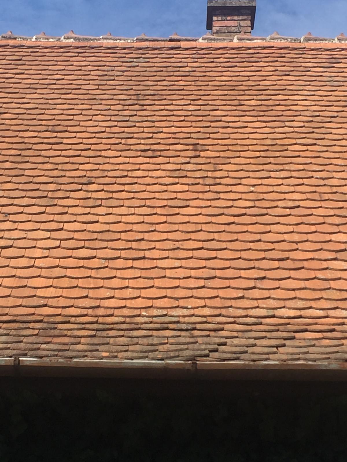 Dom - takúto strechu chcem
