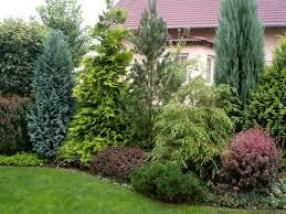Ahoj střecháči, zdravím vás po dlouhé pauze. Potřebovala bych poradit od zahradníků. Máme terasu situovanou po celé délce na jih. Kvůli povodňové oblasti jsme celý dům dali nad původní terén asi o 1,5 m, takže i z terasy teď shlížíme zvrchu přímo na sousedy. Chtěla bych tedy terasu zakrýt pruhem živého plotu v délce asi 7 metrů. Nelíbí se mi moc jednolité jednodruhové ploty. Mám představu pásu smíšených dřevin jako na ilustračním obrázku. Poradíte mi prosím někdo, jaké dřeviny (listnaté i jehličnaté) a kolik na těch 7 metrech by mohlo být? Výška cca 2 metry. Díky. - Obrázek č. 2