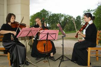 smyčcové trio inzeruje na těchto stránkách a hráli krásně