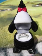 už spomínaný tučniačik