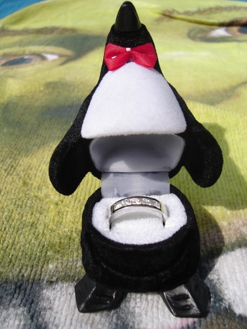 Mima{{_AND_}}Andy - už spomínaný tučniačik