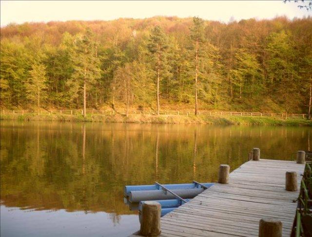 Môj sen - načo platit za priestor, keď nikde nie je tak krásne ako v prírode