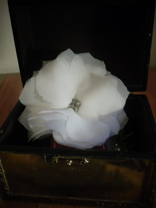 Môj sen - kvet, ktorý budem mat vo vlasoch