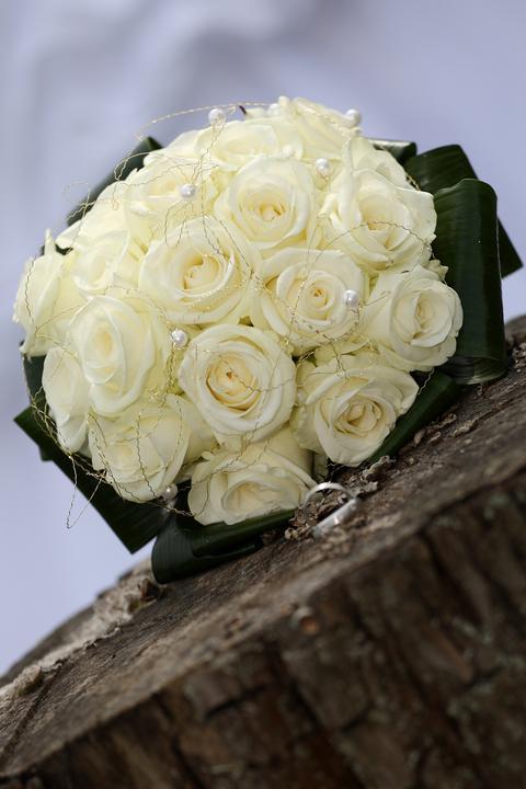 Veronika{{_AND_}}Martin - Moja krásna kytička z ružičiek