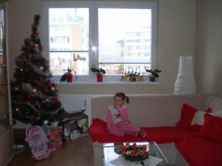 A už sme v svojom ... - vianočný stromček