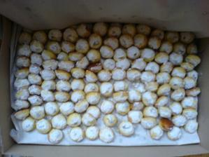 toto jsou koláčky od Bobiny, výborné a malinkaté :-)