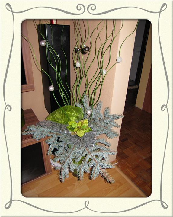 Vianoce 2010 - dekorácia vo váze