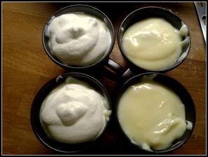 vanilkový pudlik s piškoty a jahodovou marmeládou a se šlehačkou (teda s tou jen pro mě, ten můj to nemusí)