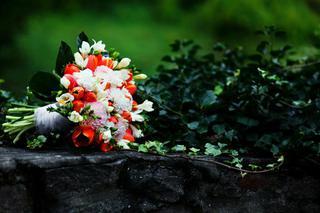 Ahoj,tulipány sú pekné v... - Obrázok č. 1