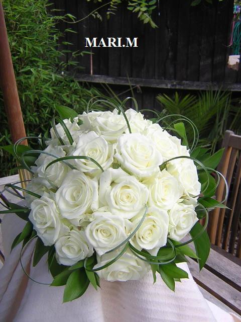 Lucka a Tonko 6. 9. 2008 - Obrázok č. 13