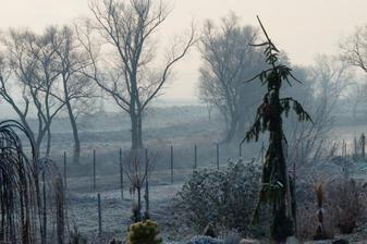 Dnesne mrazive ranko:)