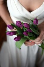 Chcem fialove tulipany