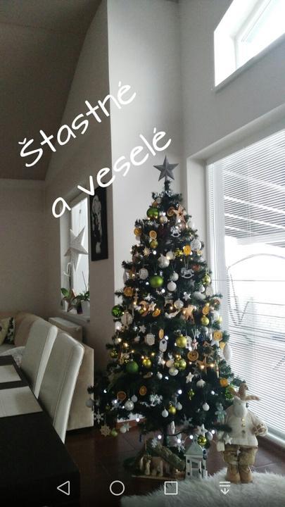 Želáme štastné a požehnane Vianočne sviatky plne lasky a pohody