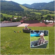 načo je nám super bazén,jemu stačí storočná kovová vanička,to bolo radosti.A na tej záhrade vyzeral ako stroskotanec.....