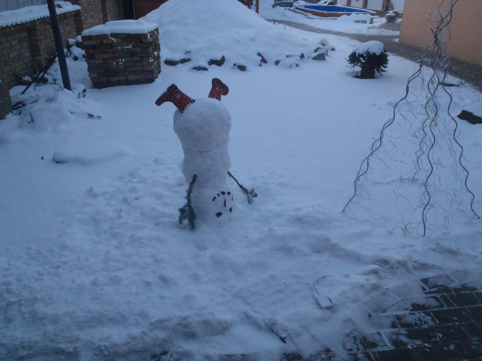 Vánoce 2012 - inspirace z MS, loni (předloni) byl u nás taky sníh ...