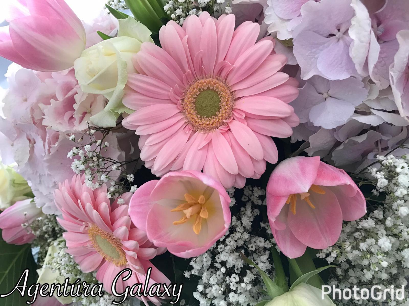 """,,Ružová krása kvetín"""" - Obrázok č. 14"""