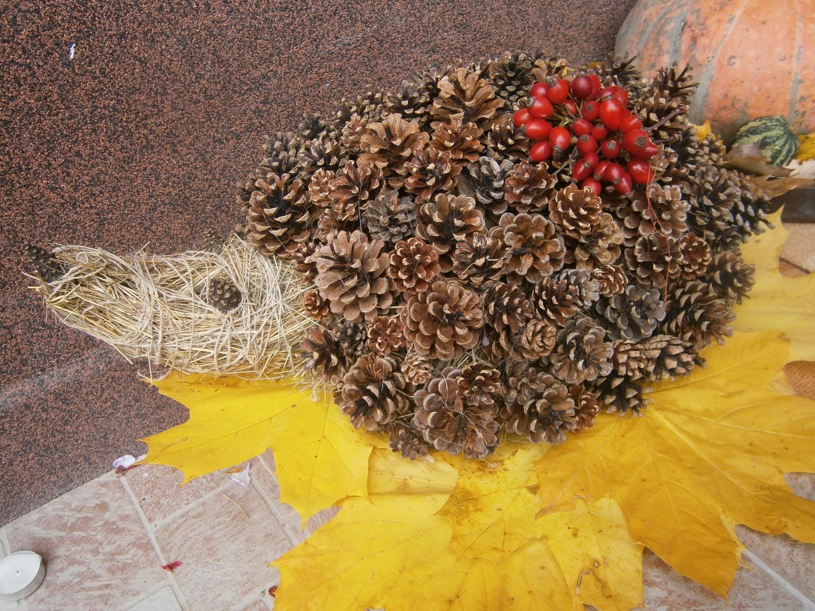 Náš DVOR  (pred a po) - moj vlastnoručne vyrobeny a vyzbierany ježko