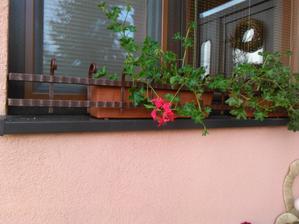 konečne máme zabrany na oknách ...už na mna nebudu padat kvetinace :D