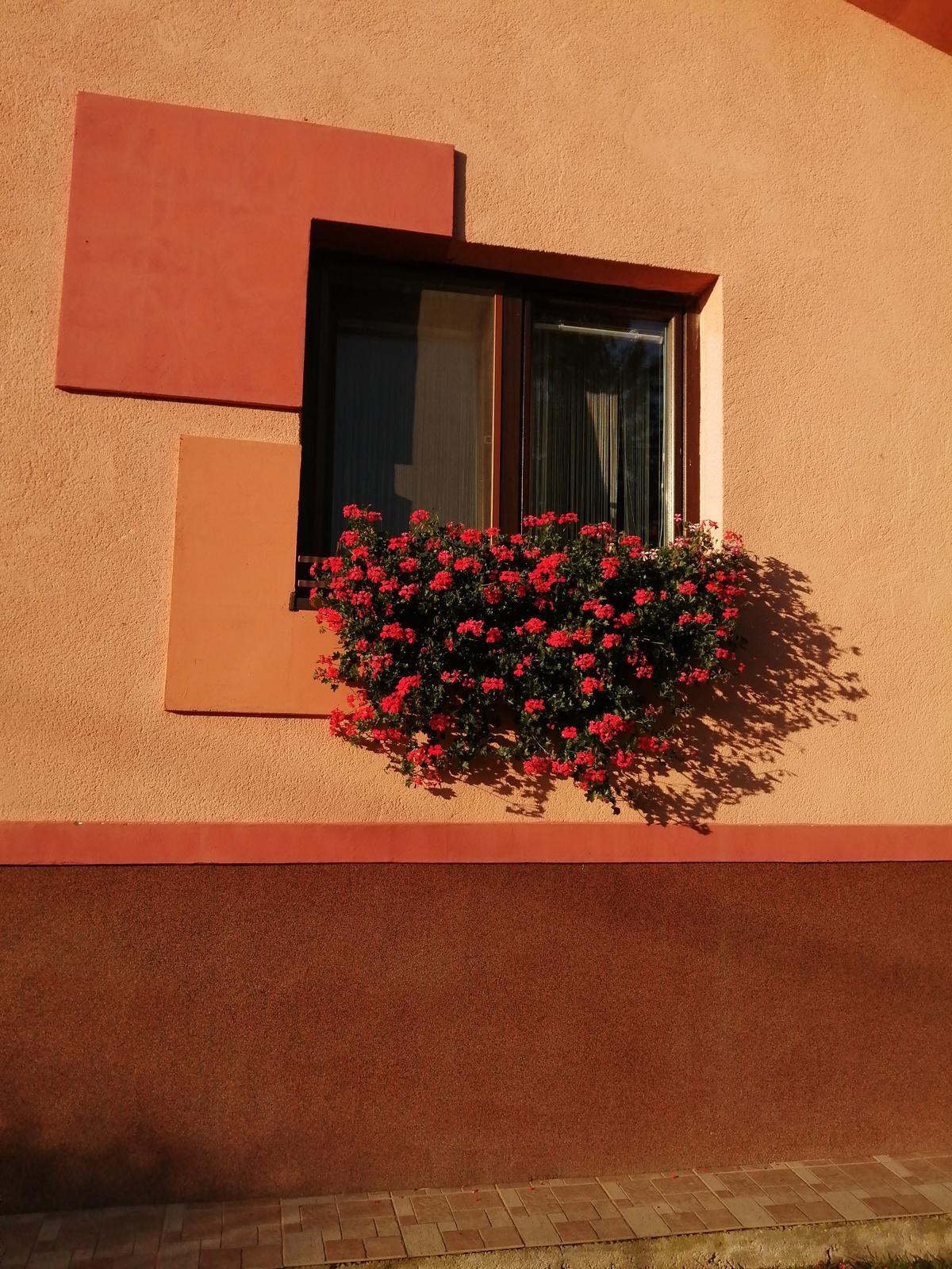 Posledné krásne teplé slnečné dni - Obrázok č. 1