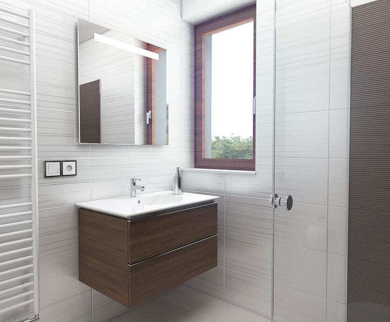 Koupelny - mala koupelna se sprchovym koutem a WC