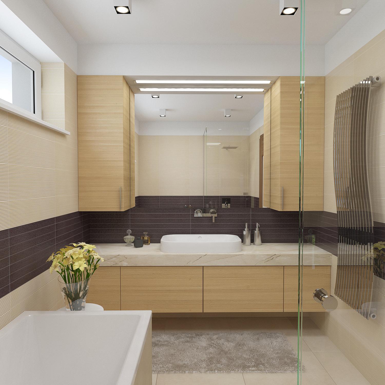 AKTUALNI PROJEKT 08 2014 - koupelna - pohled na umyvadlo