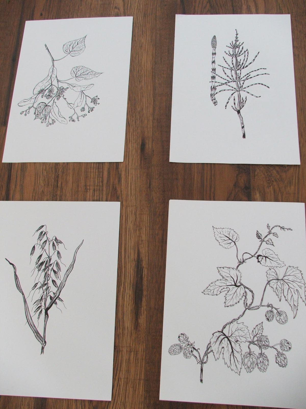Premeny - Ešte aspoň dve kresby a už len kúpiť čierne rámiky na stenu za jedálensky stôl.