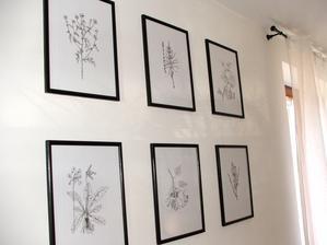 obrázková stena z bylinkami za jedálenským stolom