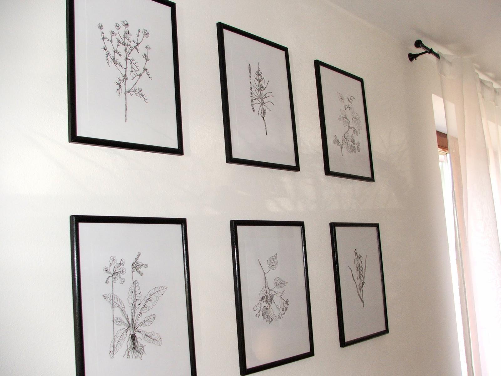 Domov - obrázková stena z bylinkami za jedálenským stolom